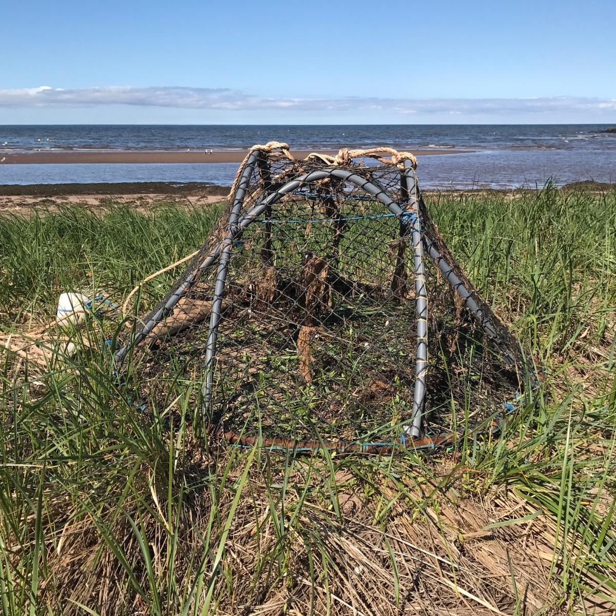 On perd des Acadiens... et puis après? - Ricky G. Richard