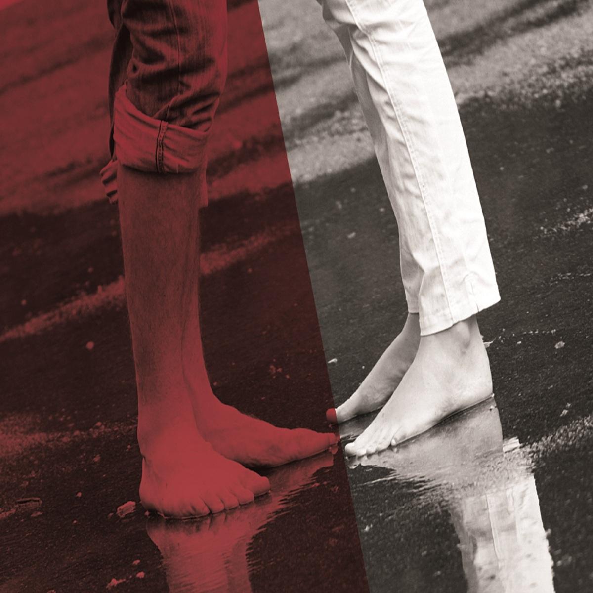 Des histoires d'amour, de familles et de crimes : Sans réserve de Fernande Chouinard - Angelika Vybiral