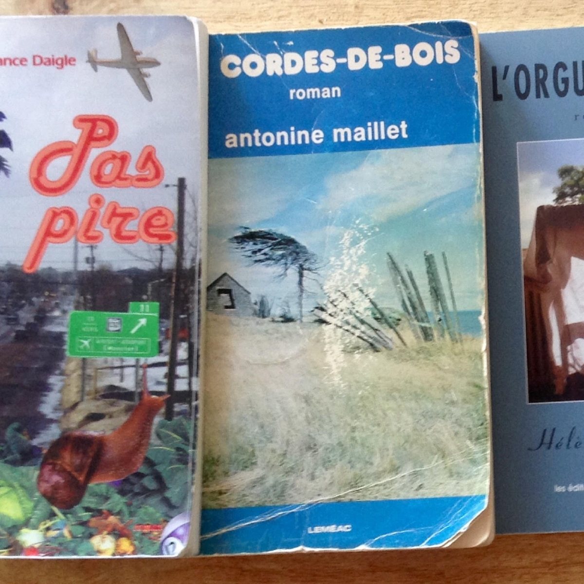 Cinq livres pour s'initier à la littérature acadienne - Xavier Lord-Giroux